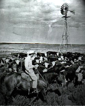 Nix Ranch & Cattle Company